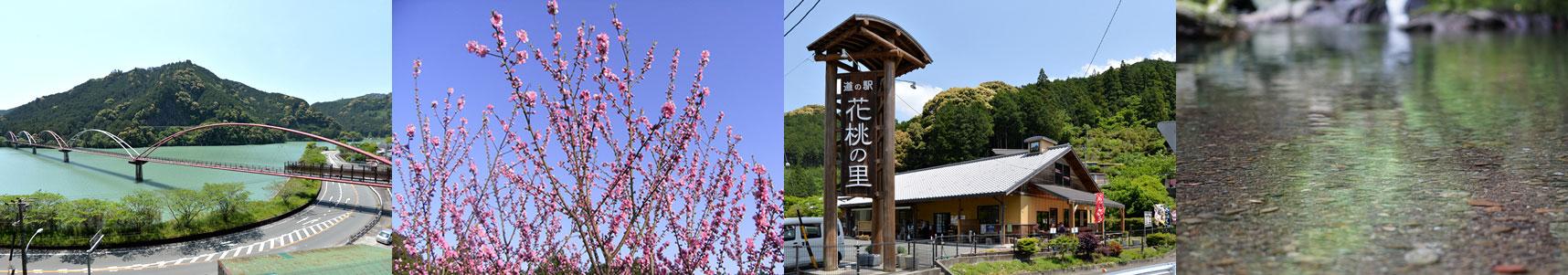 花桃の里風景写真