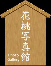花桃写真館