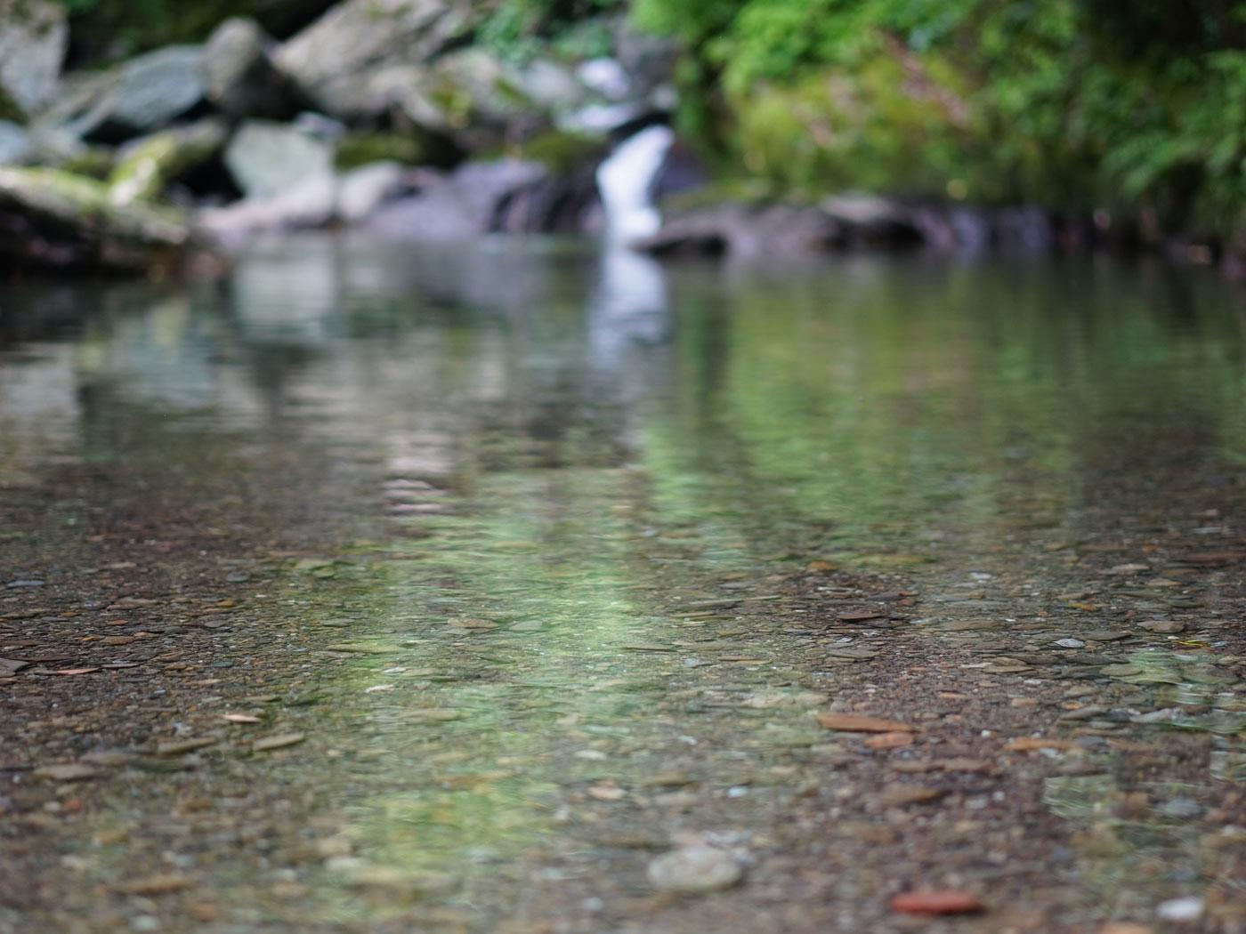 花桃の里周辺の水辺